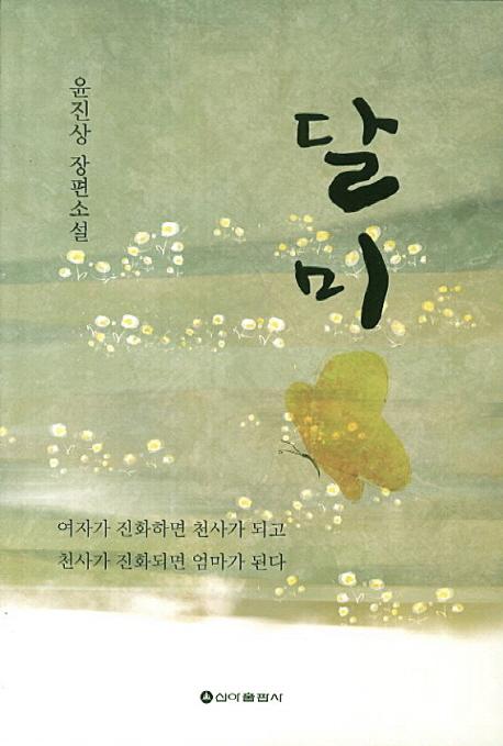 달미 :  윤진상 장편소설